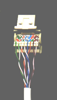 Cat5 Wall Jack Wiring - Wiring Diagram Dash Cat Wiring Diagram Australia on cat 5 wall jack diagram, cat 5 a vs b, speaker wire diagram, cat 5 installation, cat 5 cable diagram, cat 5 generator, cat 5 specifications, cat 5 troubleshooting, cat 5 wall plate, cat 5 vs cat 6, ceiling fan installation diagram, cat 5 pin configuration, cat 5e vs cat 5, cat 6 jack wiring, cat 6 diagram, cat wiring standards, cat 5 connectors diagram, cat 5 distributor, cat 5 splitter, cat color by number coloring pages,